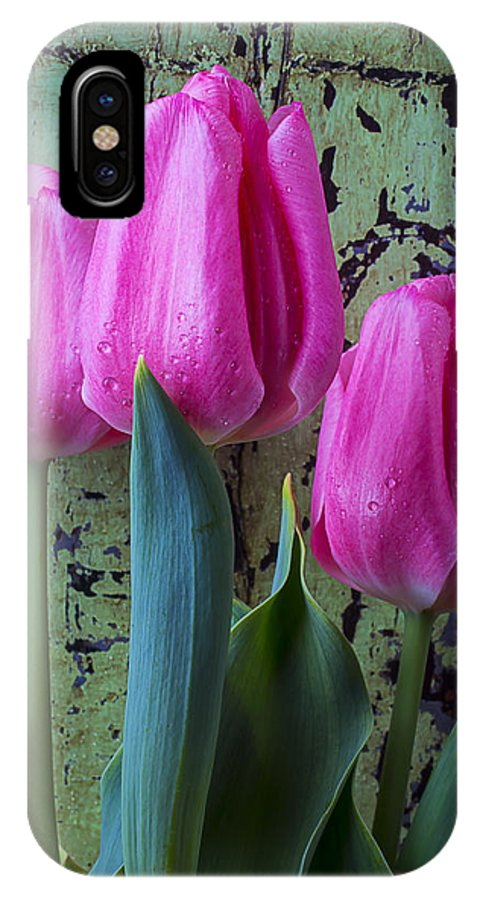 Three Pink IPhone X Case featuring the photograph Three Pink Tulips by Garry Gay