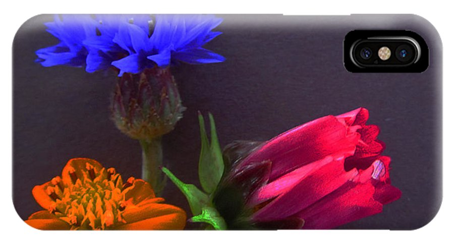 Happy IPhone X Case featuring the photograph Three Shapes by Tina M Wenger