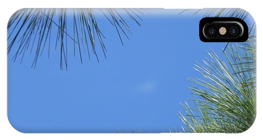 Blue IPhone X Case featuring the photograph Through The Leaves by Cynthia N Couch