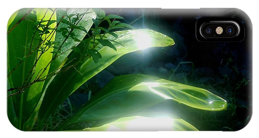Green IPhone X Case featuring the photograph Ti Light by Karen Krause