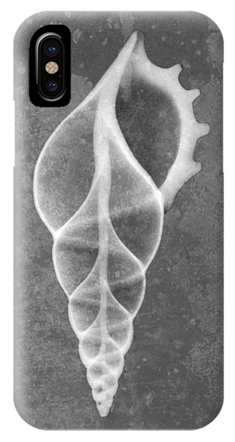 X-ray Art IPhone X Case featuring the photograph Tibia Sea Shell X-ray Art by Roy Livingston