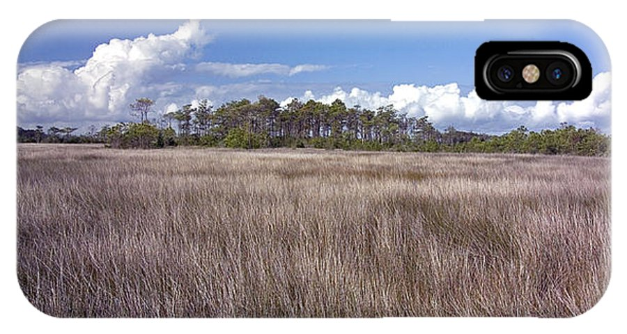 North Carolina IPhone X Case featuring the photograph Tidal Marsh On Roanoke Island by Greg Reed