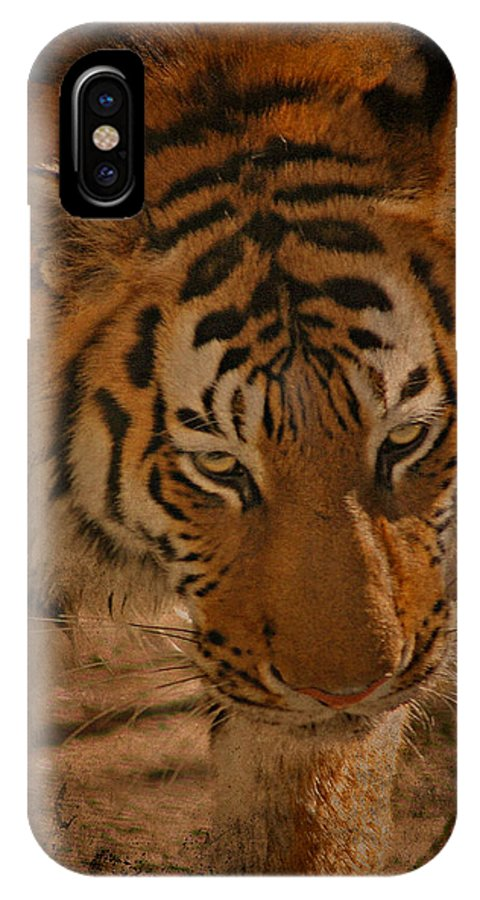 Tiger IPhone X Case featuring the photograph Tiger Art by Cindy Haggerty
