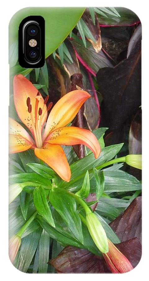 Flowers IPhone X Case featuring the photograph Tiger Lily by Bruce Sommer