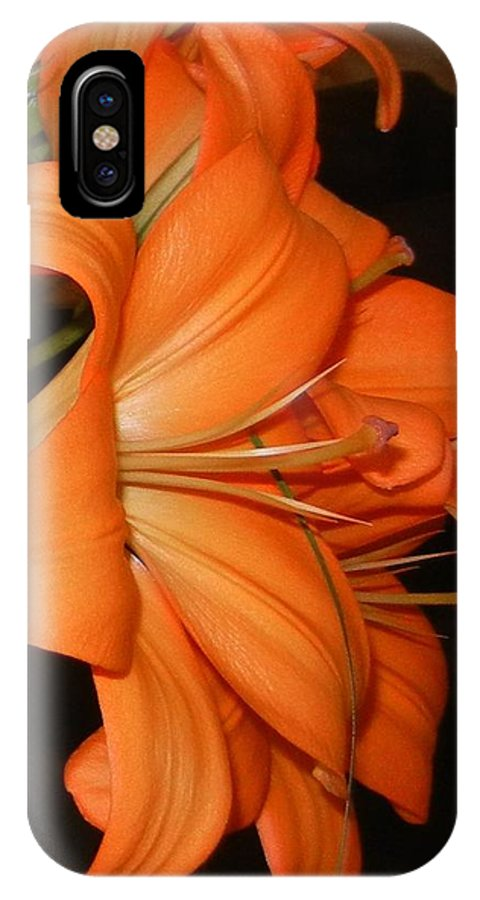 Tiger Lily IPhone X Case featuring the photograph Tiger Lily by Cindy Goshko