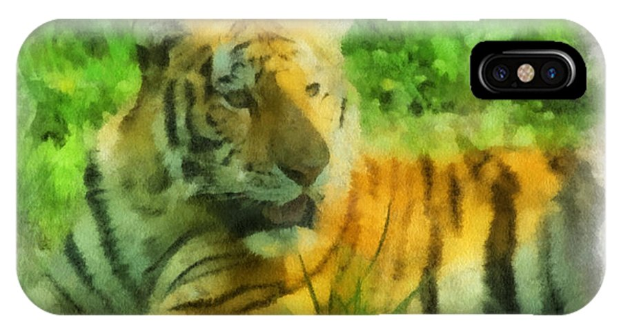 Feline IPhone X Case featuring the photograph Tiger Resting Photo Art 01 by Thomas Woolworth