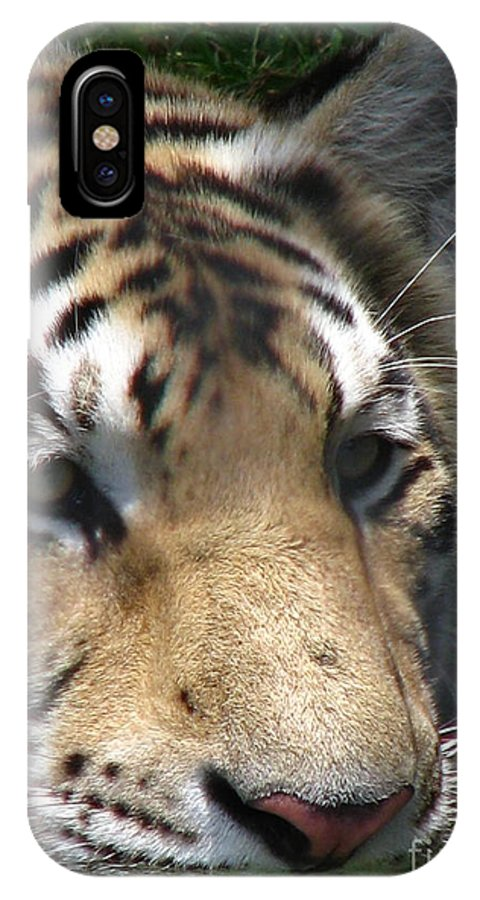 Patzer IPhone X Case featuring the photograph Tiger Water by Greg Patzer