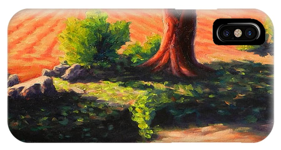 Landscape IPhone X Case featuring the painting Time For Planting, Peru Impression by Ningning Li