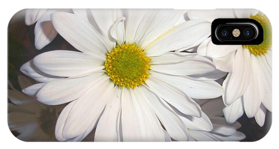 Daisy IPhone X Case featuring the photograph Timeless Sunshine Daisy by Patty Boban Lipinski