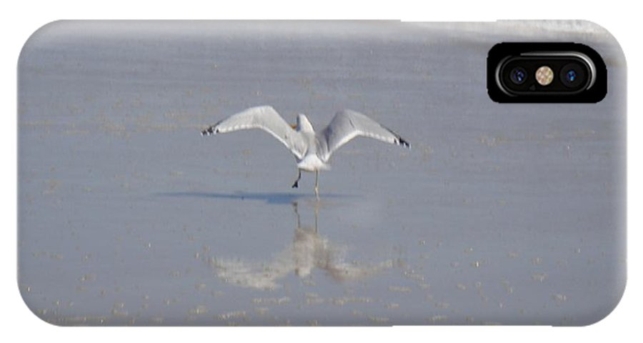 Ocean IPhone X Case featuring the photograph Tippy Toes by Mj Petrucci