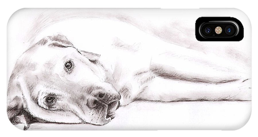 Dog IPhone Case featuring the drawing Tired Labrador by Nicole Zeug