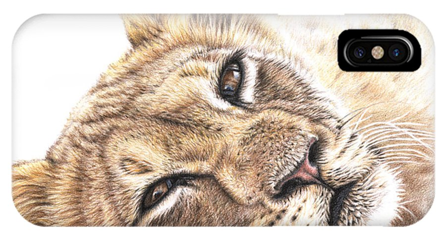 Lion IPhone X Case featuring the drawing Tired Young Lion by Nicole Zeug