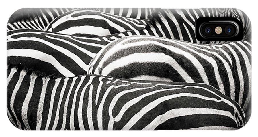 Zebra IPhone X Case featuring the photograph Together by Roelof De Hoog