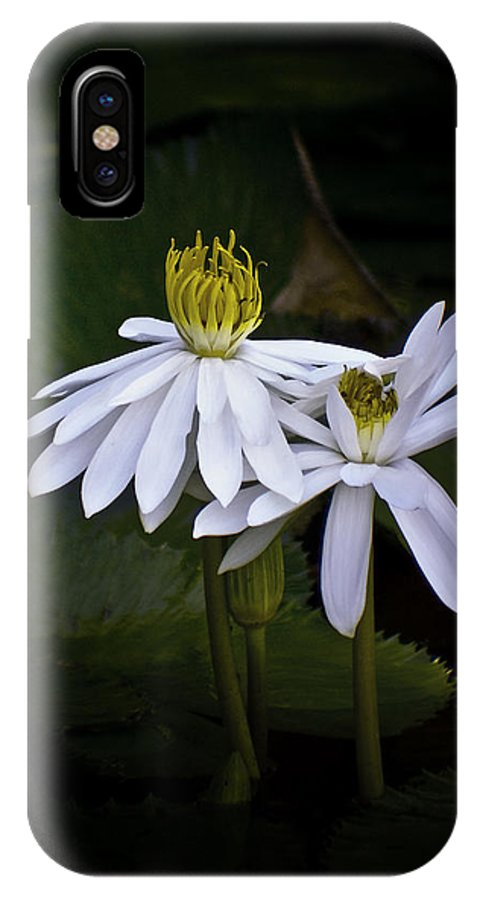 Floral IPhone X Case featuring the photograph Togetherness by Holly Kempe