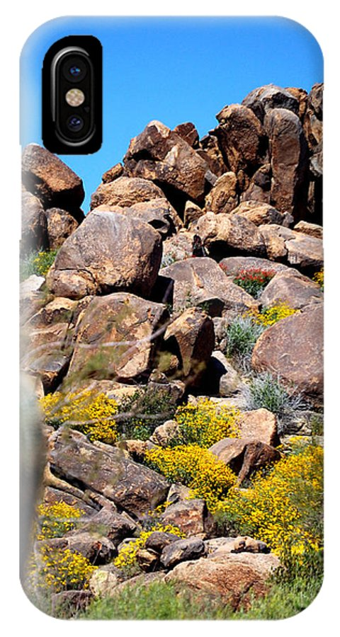 Forest IPhone X Case featuring the photograph Tonto Saguaro Rocks 10189 by Jerry Sodorff