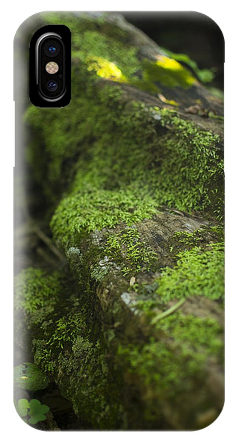 Tree IPhone X Case featuring the photograph Touched By Nature by Michael Williams