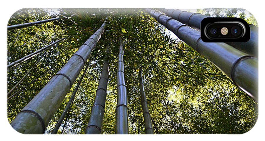 Asia IPhone X Case featuring the photograph Towering Bamboo by Holly Blunkall