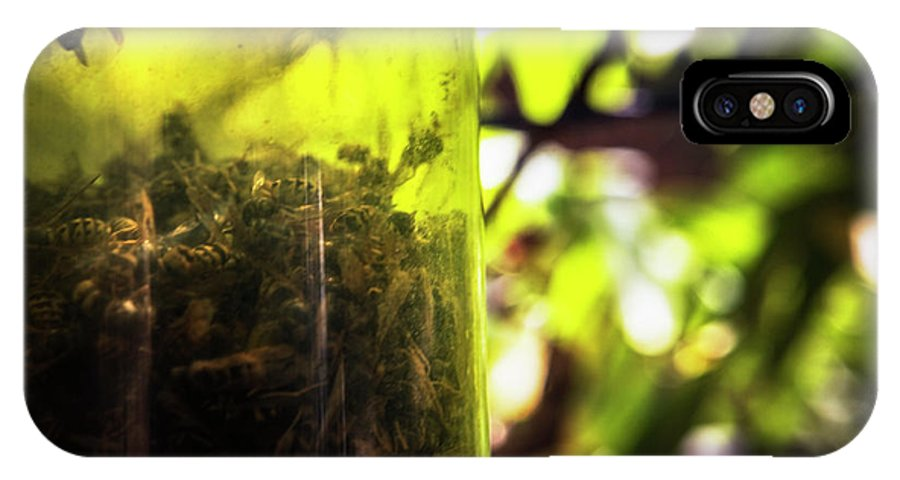 Horizontal IPhone X Case featuring the photograph Trapped And Dead Bees by Ron Koeberer