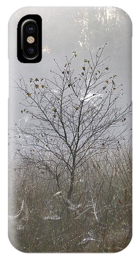 Tree IPhone X Case featuring the photograph Tree And Cobwebs by Ronald Jansen