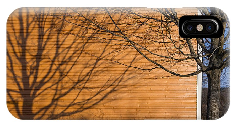 Orange IPhone X Case featuring the photograph Tree And Shadow At Cogswells Grant by David Stone