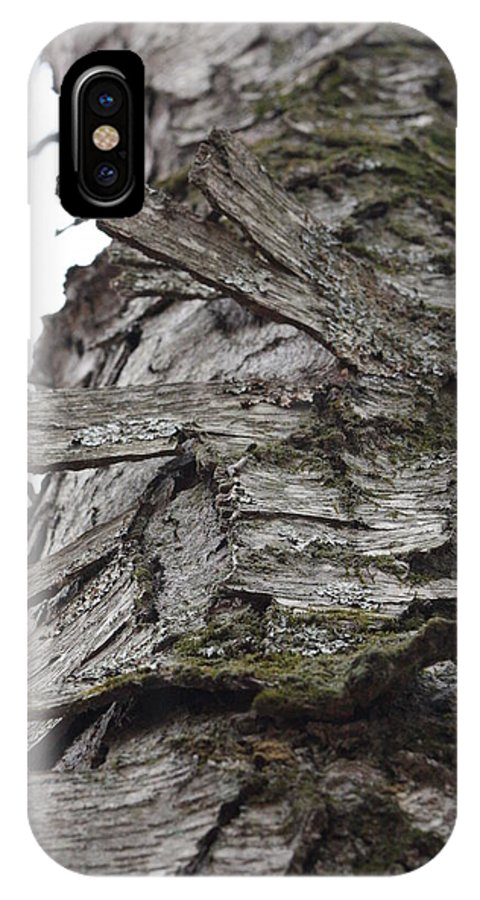 Tree IPhone X Case featuring the photograph Tree Bark by Carmine Taverna