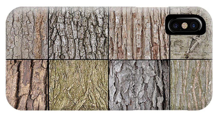 Tree Bark IPhone X Case featuring the photograph Tree Bark by Ronald Grogan