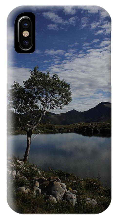 Tree IPhone X Case featuring the pyrography Tree by Evaldas Slizauskas
