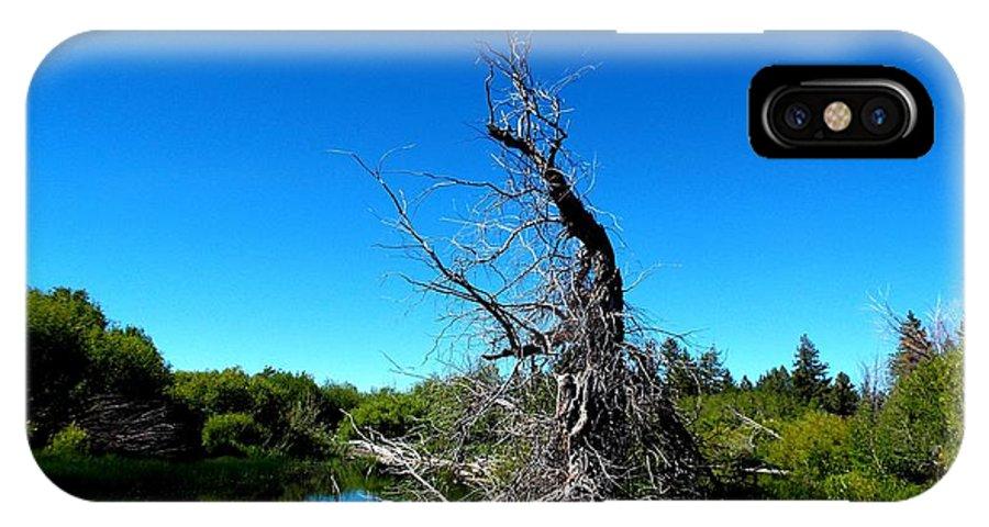 Tree IPhone X Case featuring the digital art Tree In The Marsh by Robert Happersberg