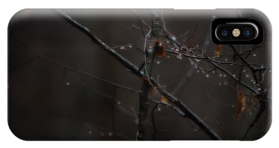 Branch IPhone X Case featuring the photograph Tree Limb With Rain Drops 2 by J Riley Johnson
