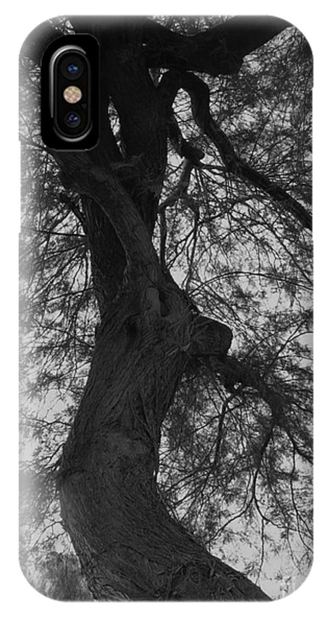 Photography IPhone X Case featuring the photograph Tree Tangle by Theresa Davis