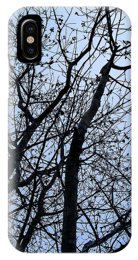 Trees IPhone X Case featuring the photograph Trees From Below by Mechala Matthews