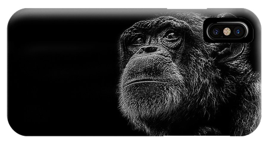 Chimpanzee IPhone X Case featuring the photograph Trepidation by Paul Neville