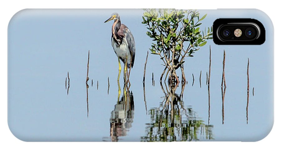 Tricolored IPhone X Case featuring the photograph Tricolored Heron by Frank Selvage