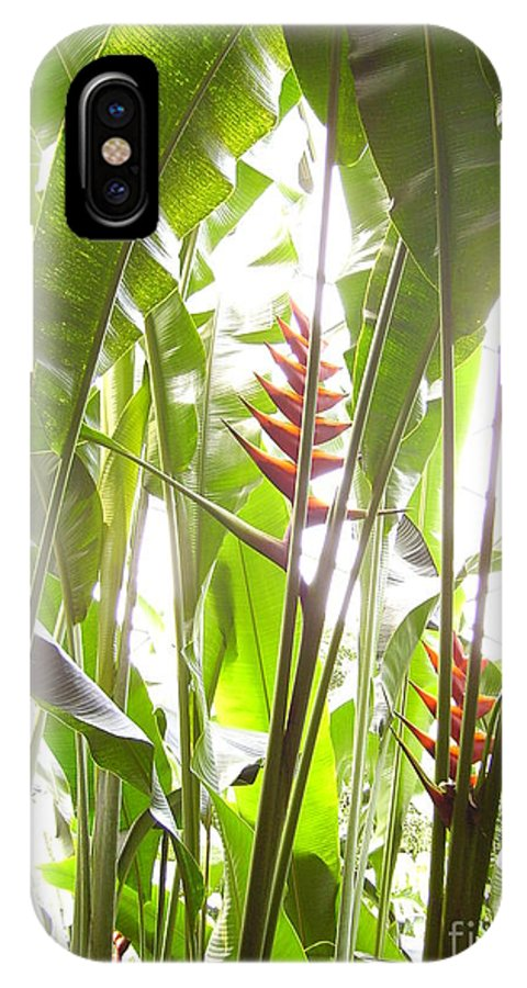 Plants IPhone X Case featuring the photograph Tropical2 by Heather Morris