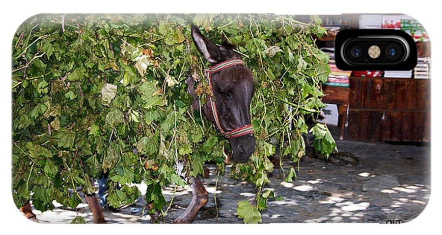 Donkey Loaded Down With Tree Branches IPhone X Case featuring the photograph Troubles by Sally Weigand