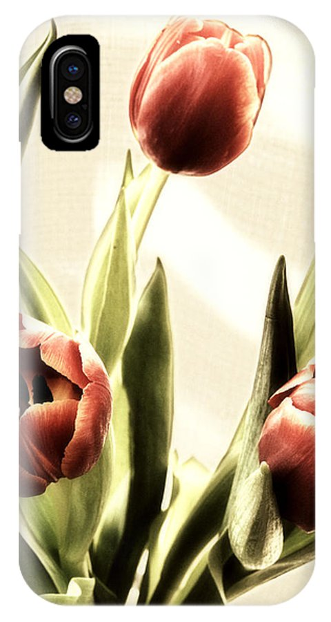 Tulips IPhone X Case featuring the photograph Truly by Marc Caryl