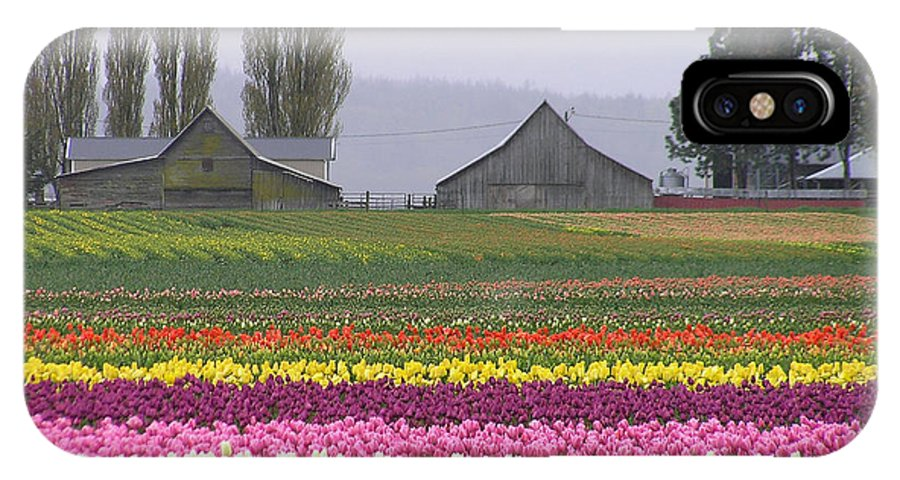Tulips IPhone X Case featuring the photograph Tulip Town Barns by Louise Magno
