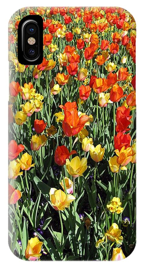 Tulip IPhone X Case featuring the photograph Tulips - Field With Love 50 by Pamela Critchlow