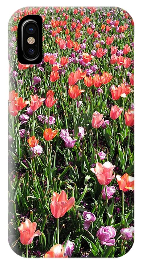 Tulip IPhone X Case featuring the photograph Tulips - Field With Love 55 by Pamela Critchlow