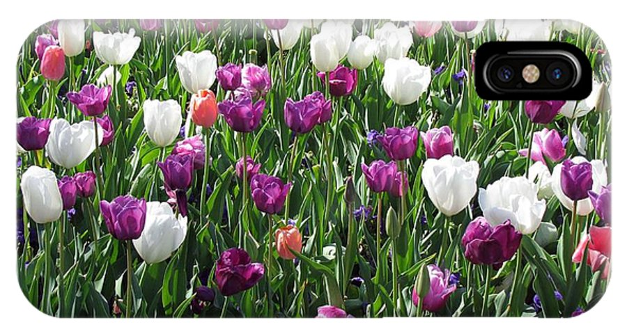 Tulip IPhone X Case featuring the photograph Tulips - Field With Love 60 by Pamela Critchlow