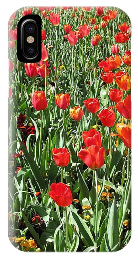 Tulip IPhone X Case featuring the photograph Tulips - Field With Love 62 by Pamela Critchlow