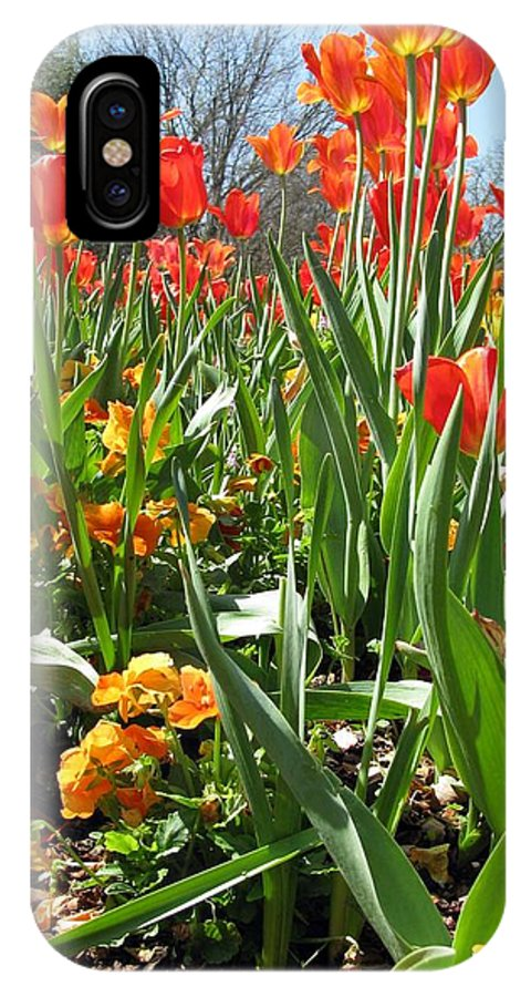Tulip IPhone X Case featuring the photograph Tulips - Field With Love 64 by Pamela Critchlow
