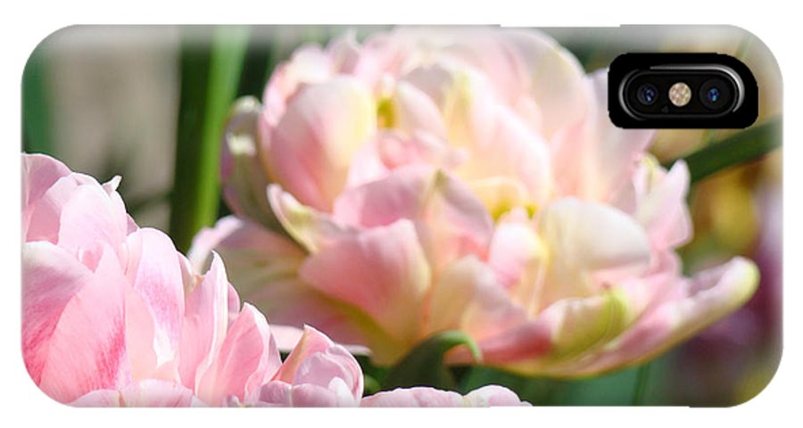 Pink IPhone X Case featuring the photograph Tulips Flowers Garden Art Prints Pink Tulip Floral by Baslee Troutman