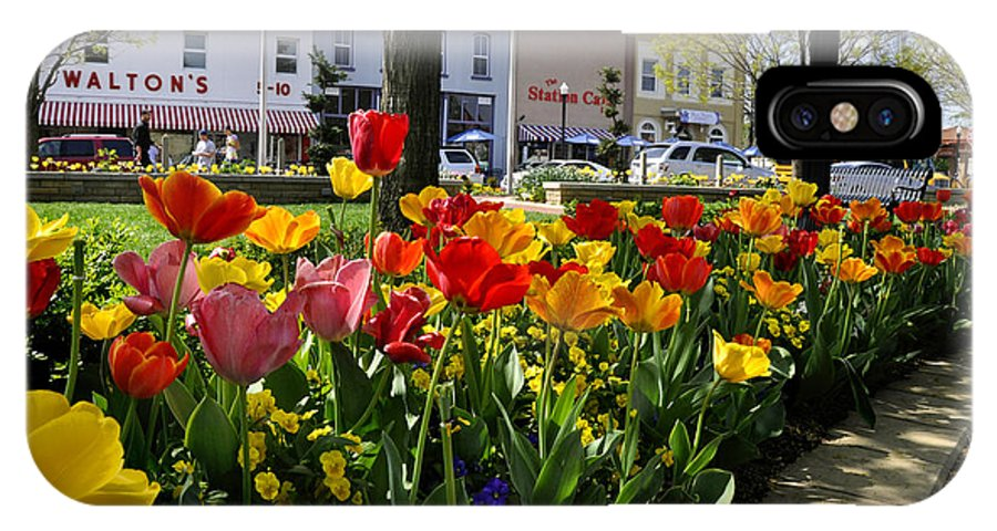 Bentonville IPhone X Case featuring the photograph Tulips In The Spring by Nava Thompson