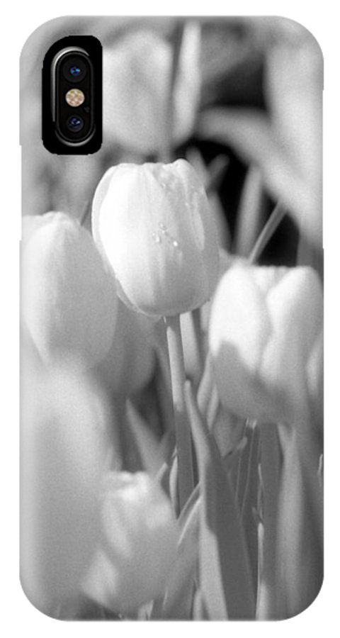Tulip IPhone X Case featuring the photograph Tulips - Infrared 11 by Pamela Critchlow