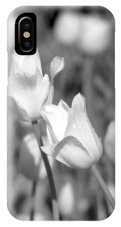 Tulip IPhone X Case featuring the photograph Tulips - Infrared 13 by Pamela Critchlow