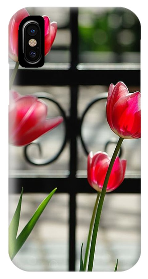 Tulips IPhone X Case featuring the photograph Tulips by Krzysztof Baginski