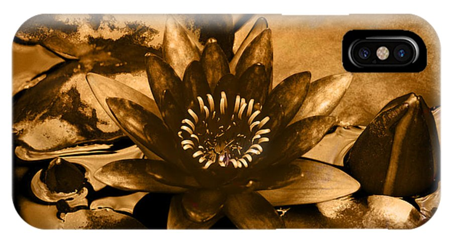 Flower IPhone X Case featuring the photograph Turned To Gold by Richard Ortolano