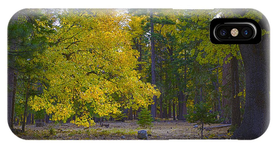 Fall IPhone X Case featuring the photograph Turning For Autumn by Fred Ziegler
