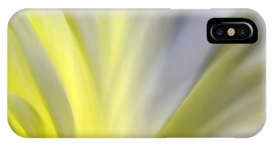 Nature Abstract IPhone X Case featuring the photograph Turning Slowly Toward The Light by KM Corcoran